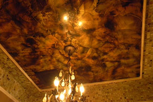Ceilings gallery category